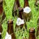 Beer Branding Strategy